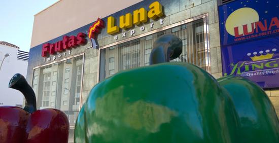 Frutas Luna